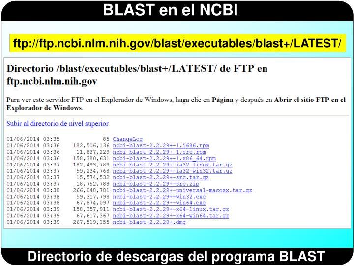 ftp://ftp.ncbi.nlm.nih.gov/blast/executables/blast+/LATEST/