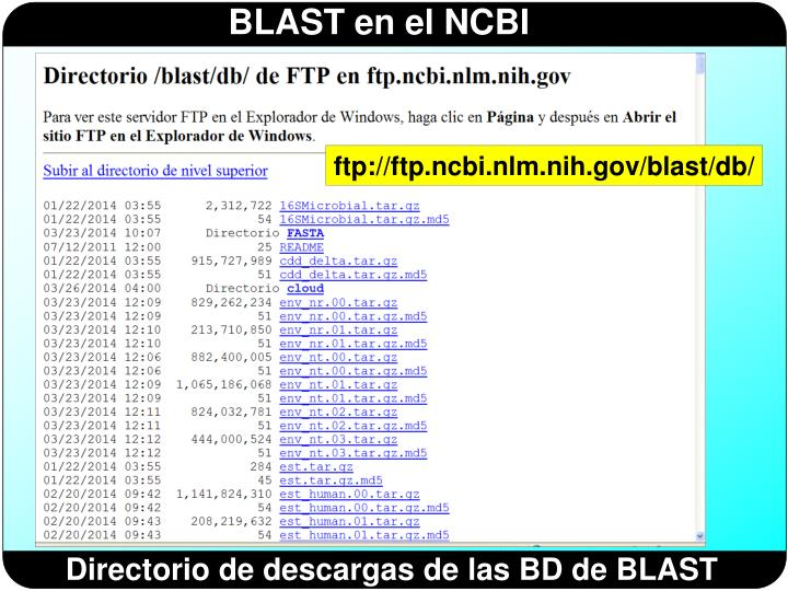 ftp://ftp.ncbi.nlm.nih.gov/blast/db/