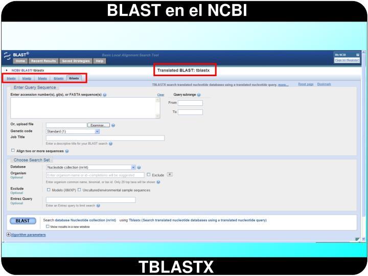 TBLASTX