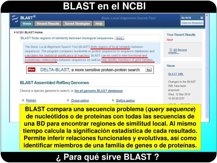BLAST compara una secuencia problema (