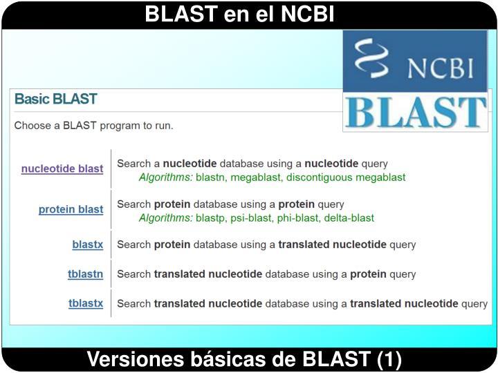 Versiones básicas de BLAST (1)