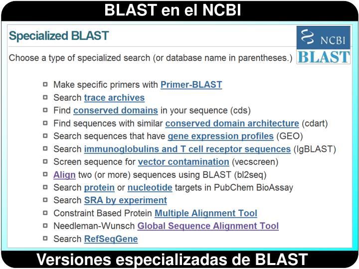 Versiones especializadas de BLAST