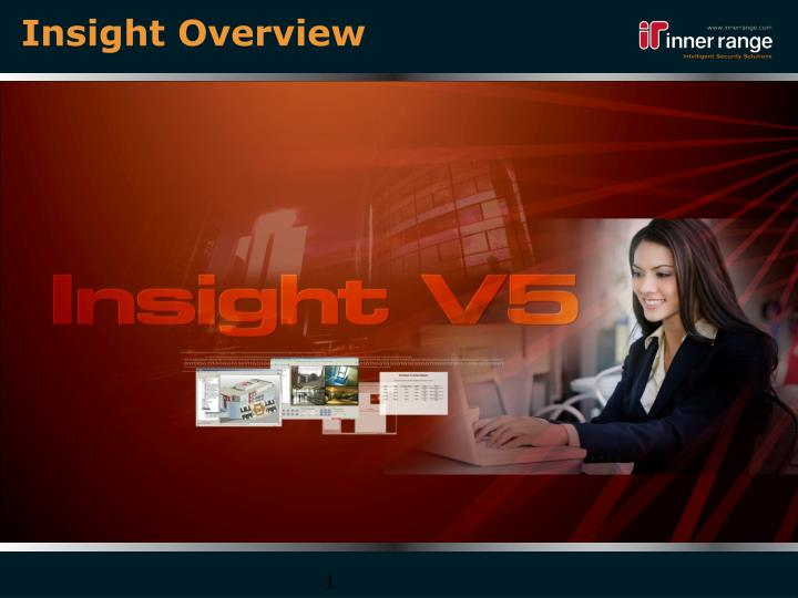 insight overview n.