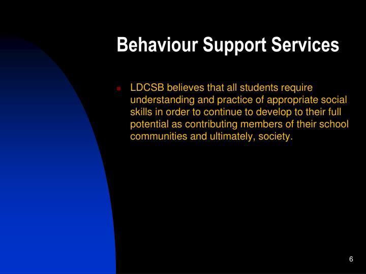 Behaviour Support Services