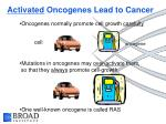 activated oncogenes lead to cancer