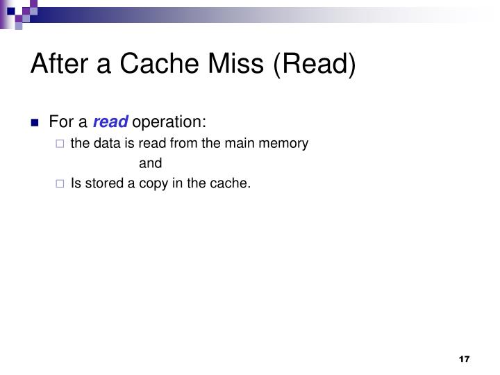 After a Cache Miss (Read)