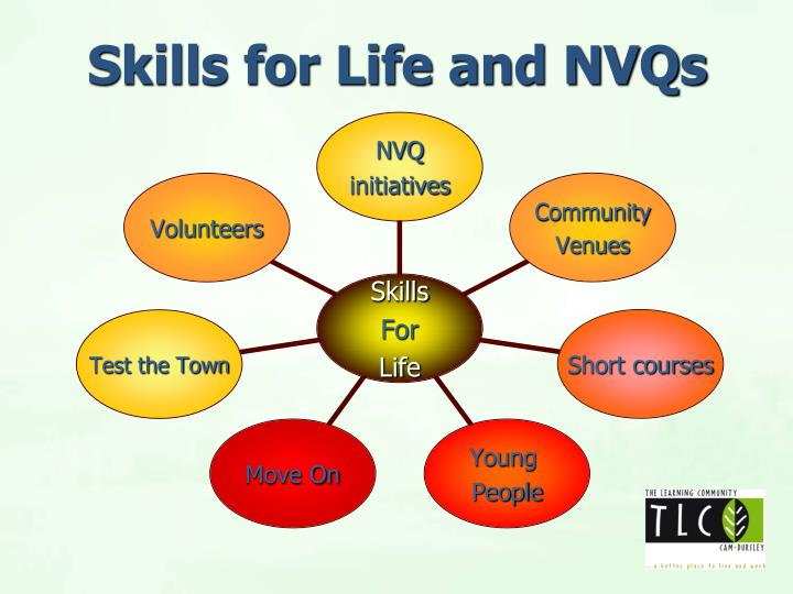 Skills for Life and NVQs