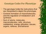 genotype codes for phenotype