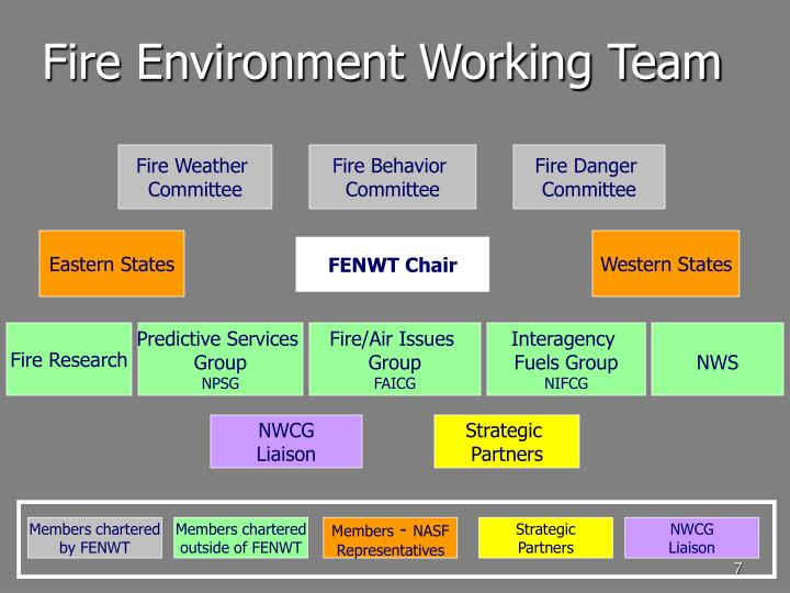 Fire Environment Working Team