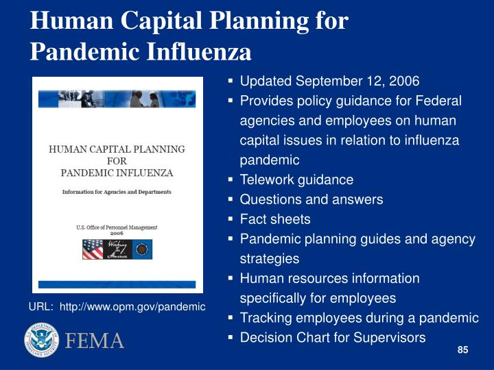 Human Capital Planning for Pandemic Influenza