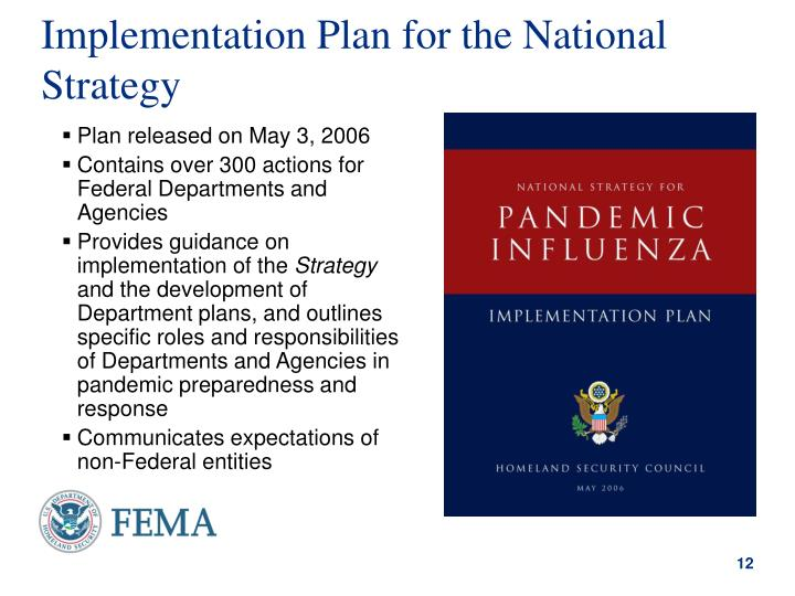 Implementation Plan for the National Strategy