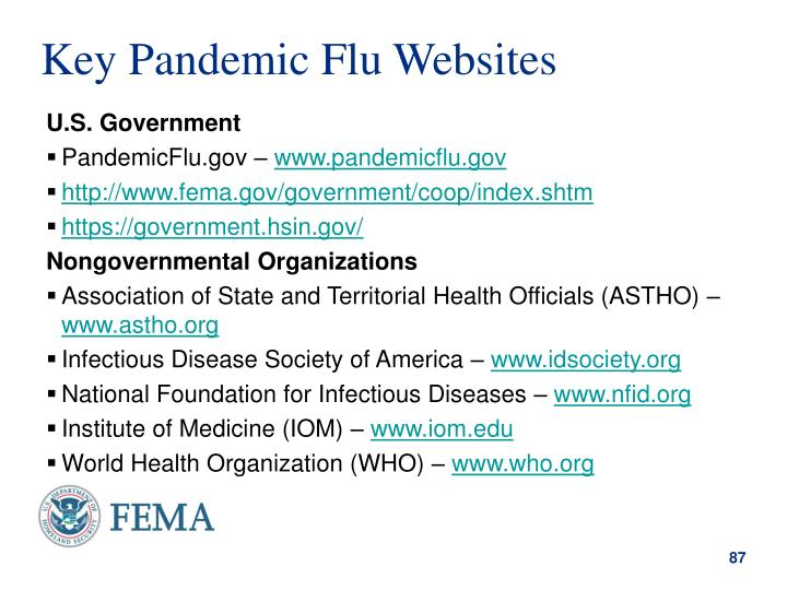 Key Pandemic Flu Websites