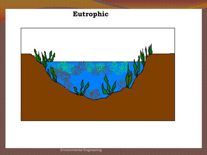 Eutrophic
