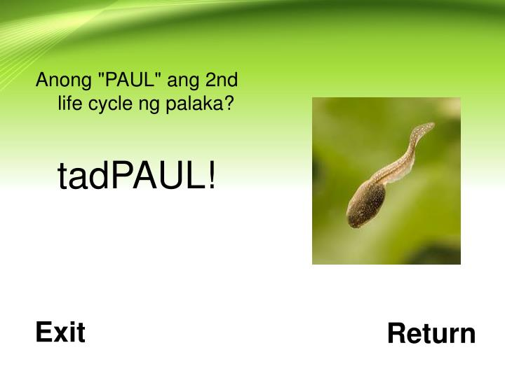 """Anong """"PAUL"""" ang 2nd life cycle ng palaka?"""
