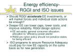 energy efficiency rggi and iso issues