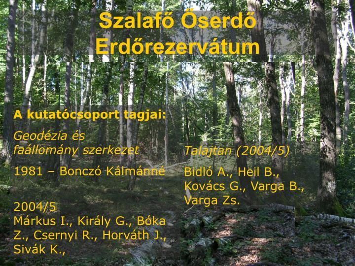 Szalafő Őserdő Erdőrezervátum