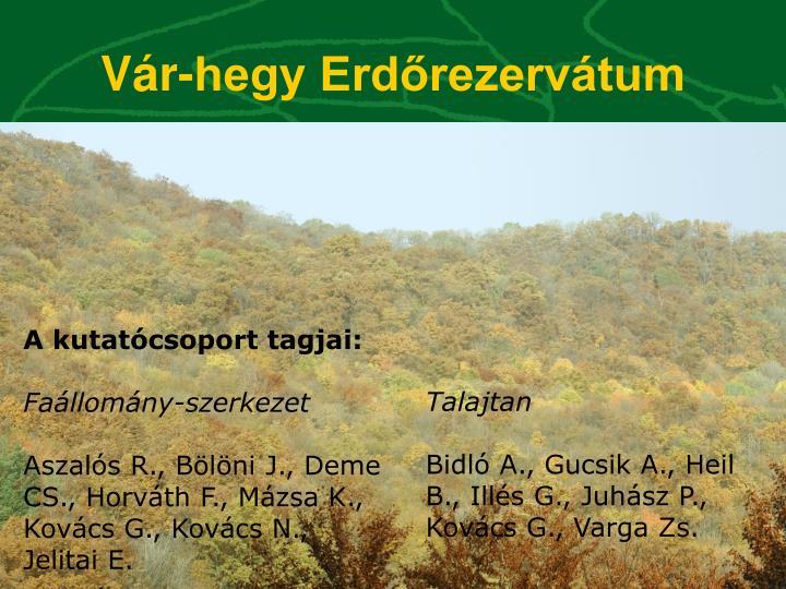 Vár-hegy Erdőrezervátum
