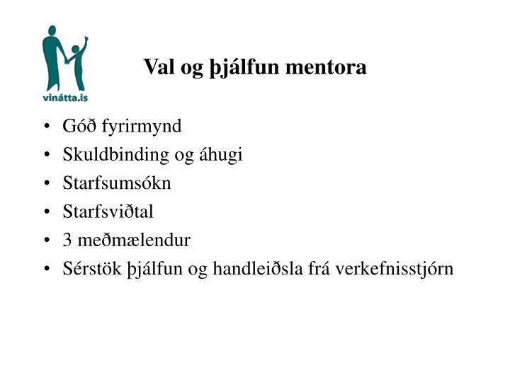 Val og þjálfun mentora