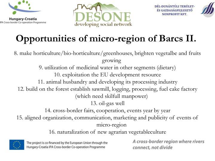 Opportunities of micro-region of Barcs II.