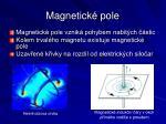 magnetick pole1