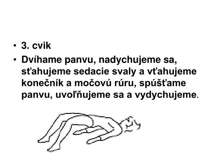 3. cvik