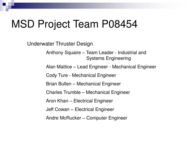 Msd project team p08454