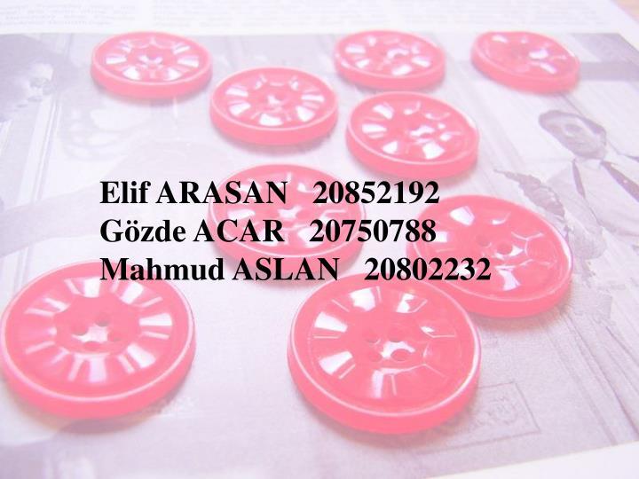 Elif ARASAN   20852192