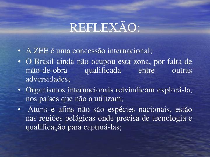 REFLEXÃO: