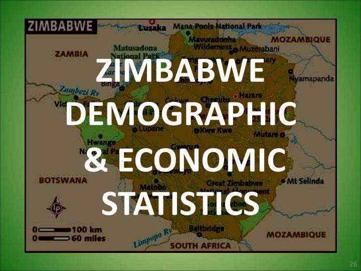 ZIMBABWE DEMOGRAPHIC