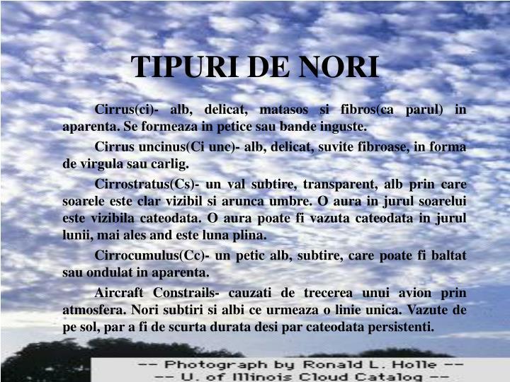 TIPURI DE NORI