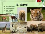 5 savci