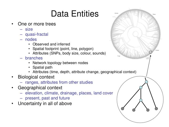 Data Entities