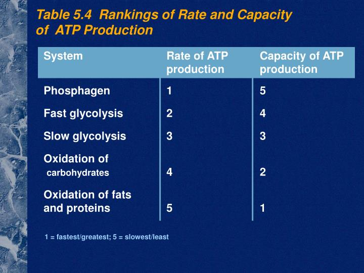 System	Rate of ATP	Capacity of ATP	production	production
