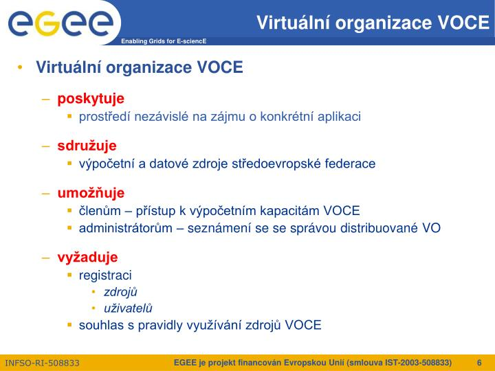 Virtuální organizace VOCE