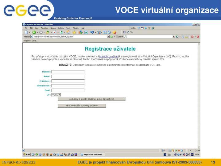 VOCE virtuální organizace