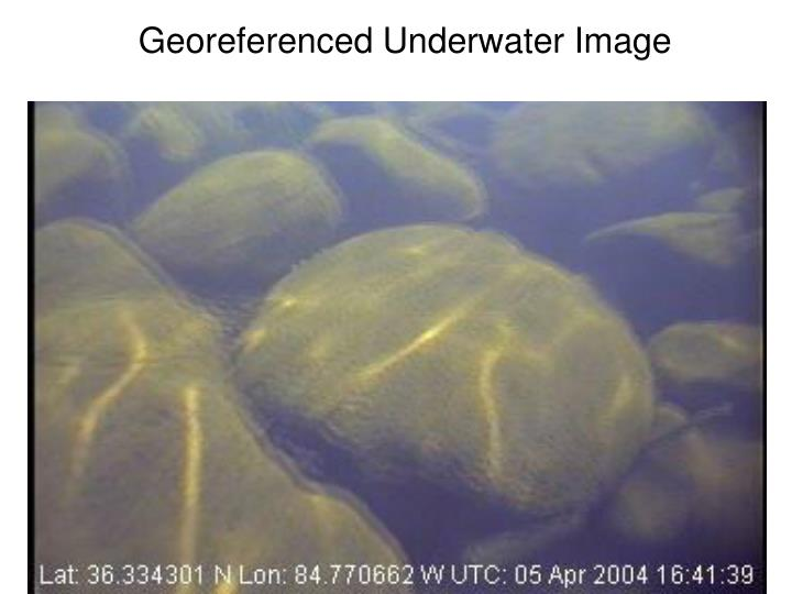 Georeferenced Underwater Image