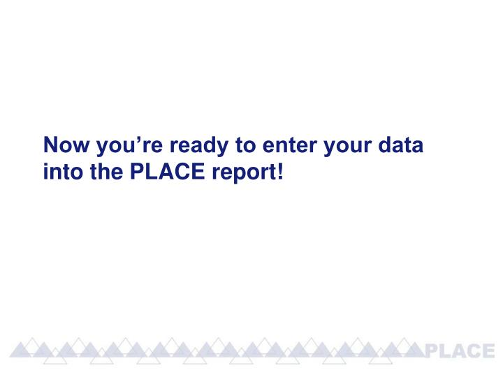 Now you're ready to enter your data into the PLACE report!