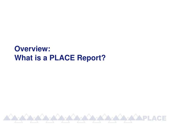 Overview what is a place report