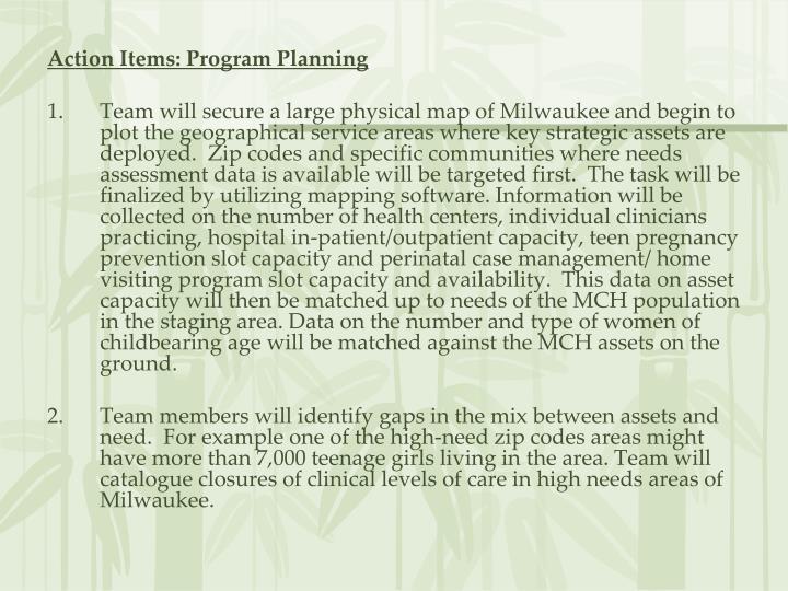 Action Items: Program Planning