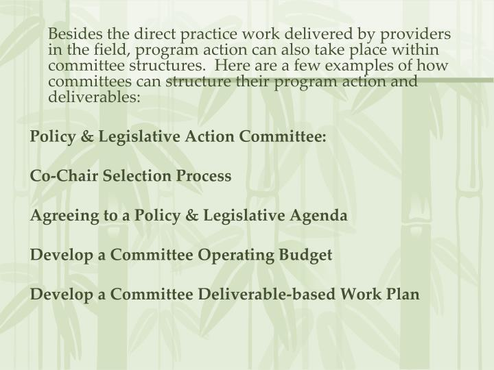 Besides the direct practice work delivered by providers in the field, program action can also take place within committee structures.  Here are a few examples of how committees can structure their program action and deliverables: