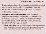 patologia conjunctivei