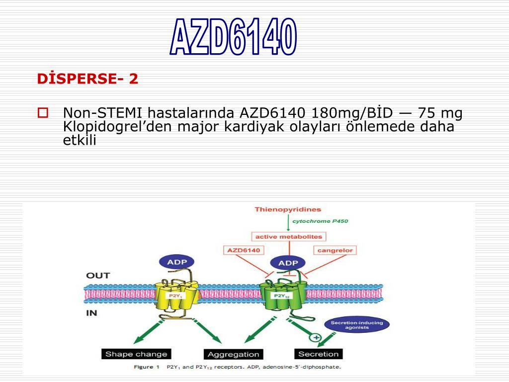 Klopidogrel Direnci - PowerPoint PPT Presentation