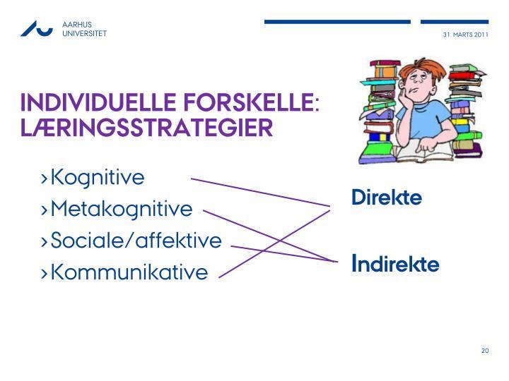Individuelle forskelle: læringsstrategier