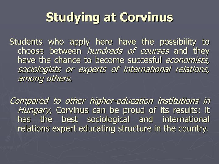 Studying at Corvinus
