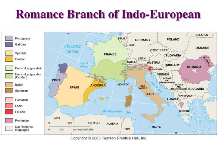 Romance Branch of Indo-European