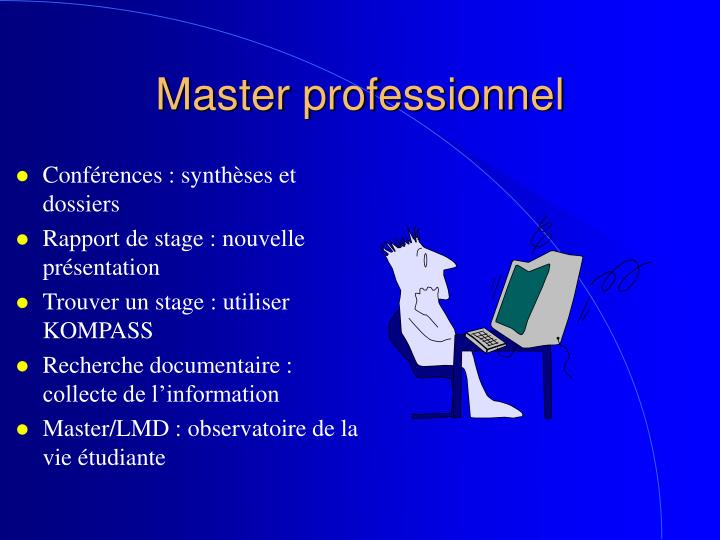 master professionnel n.