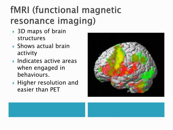 functional magnetic resonance imaging fmri and This program supports regulatory guidance by developing methods to validate dynamic neurodiagnostic biomarkers achieved using functional magnetic resonance imaging (fmri) or quantitative.