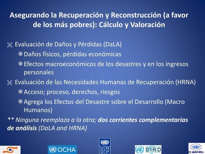 Asegurando la Recuperación y Reconstrucción (a favor de los más pobres): Cálculo y Valoración
