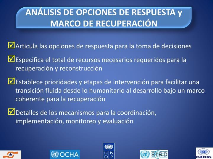 ANÁLISIS DE OPCIONES DE RESPUESTA y MARCO DE RECUPERACIÓN