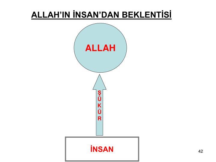 ALLAH'IN İNSAN'DAN BEKLENTİSİ